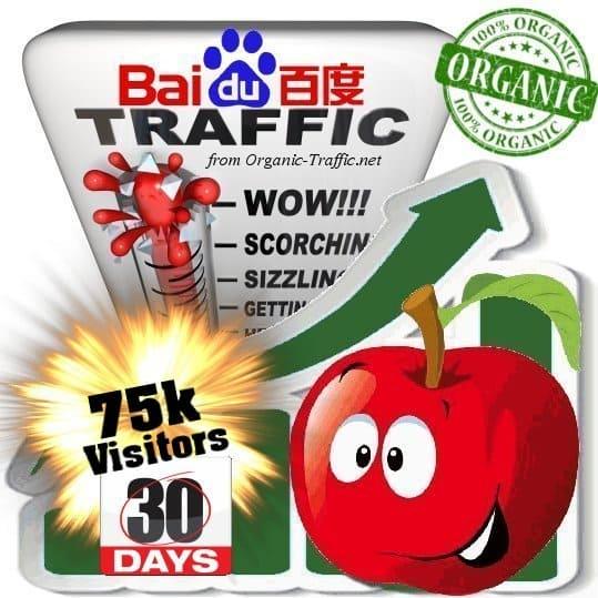 baidu organic traffic visitors 30days 75k