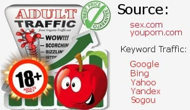 banner adult traffic visitors