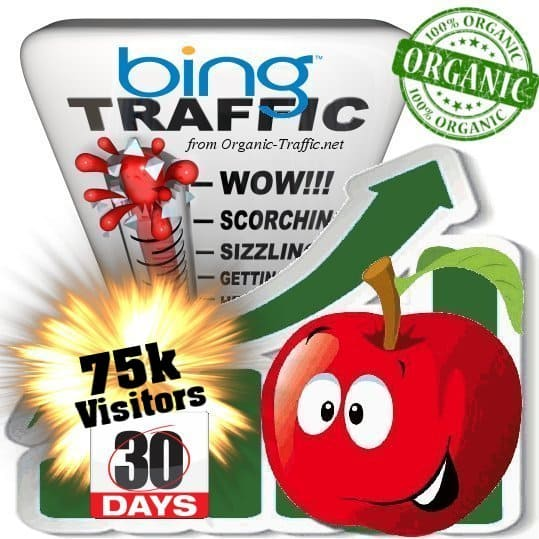 bing organic traffic visitors 30days 75k