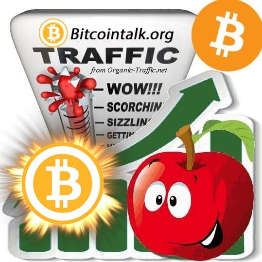 buy bitcointalk.org traffic visitors