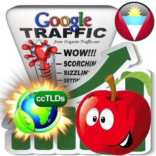 buy google antigua and barbuda organic traffic visitors