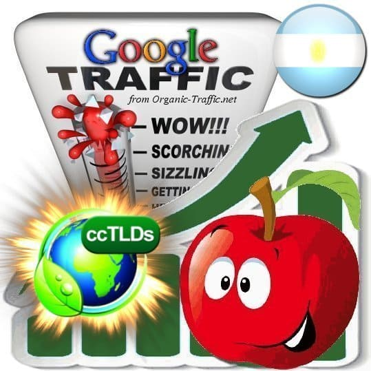 buy google argentina organic traffic visitors