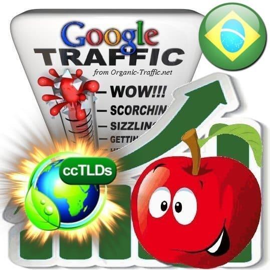 buy google brazil organic traffic visitors