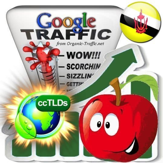 buy google brunei organic traffic visitors