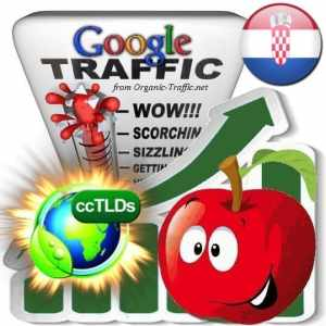 buy google croatia organic traffic visitors