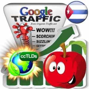 buy google cuba organic traffic visitors