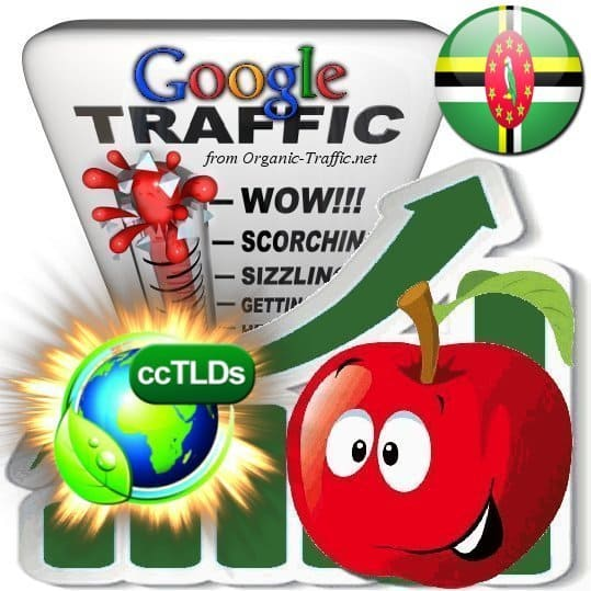 buy google dominica organic traffic visitors