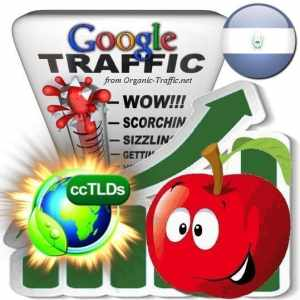 buy google el salvador organic traffic visitors