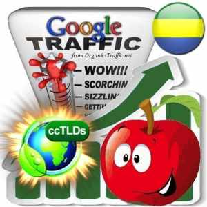 buy google gabon organic traffic visitors