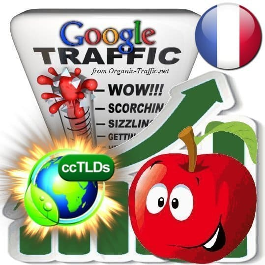 buy google guadeloupe organic traffic visitors