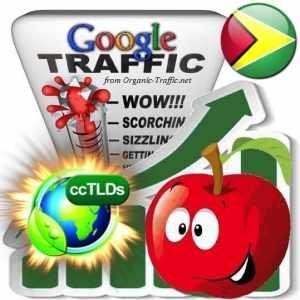 buy google guyana organic traffic visitors