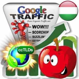 buy google hungary organic traffic visitors