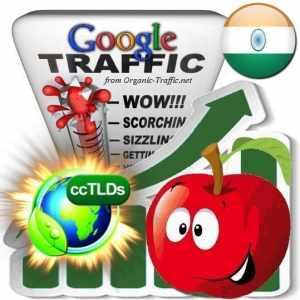 buy google india organic traffic visitors