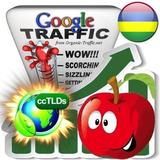 buy google mauritius organic traffic visitors