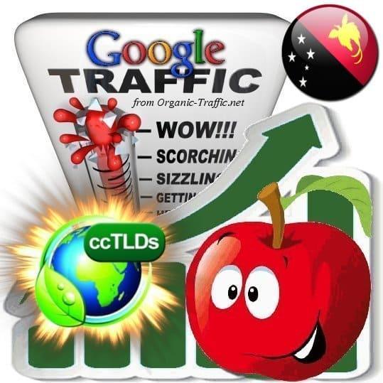 buy google papua new guinea organic traffic visitors