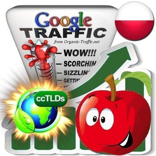 buy google poland organic traffic visitors