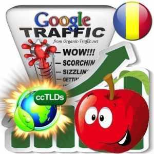 buy google romania organic traffic visitors