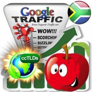 buy google south africa organic traffic visitors