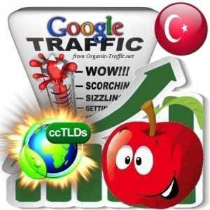 buy google turkey organic traffic visitors