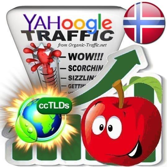 Buy Google & Yahoo Norway Webtraffic