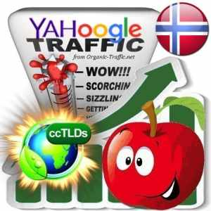 Buy Google & Yahoo Norway Webtraffic