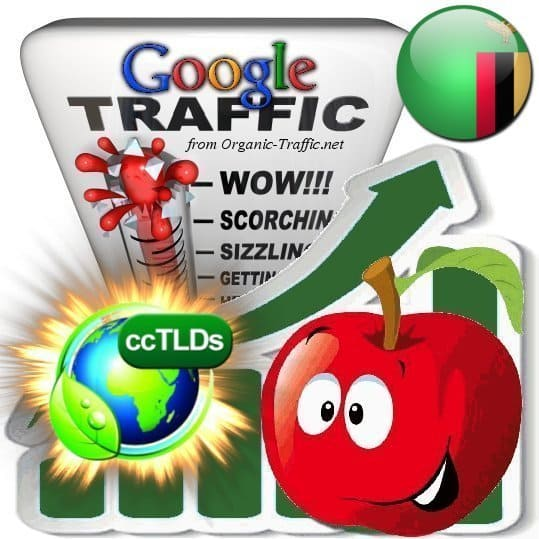 buy google zambia organic traffic visitors