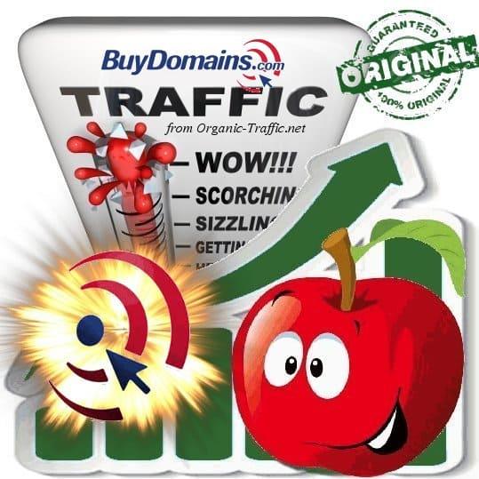 Buy Buydomains.com Web Traffic