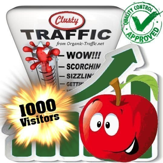buy 1000 clusty search traffic visitors