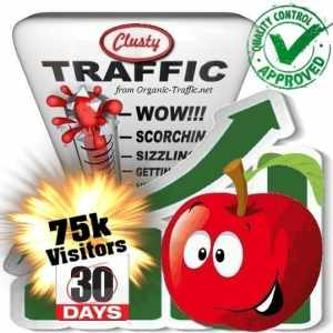 clusty search traffic visitors 30days 75k