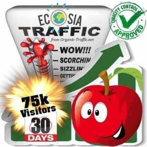 75k ecosia search traffic visitors 30days