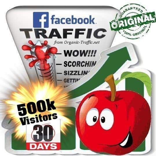 buy 500k facebook social traffic visitors in 30 days