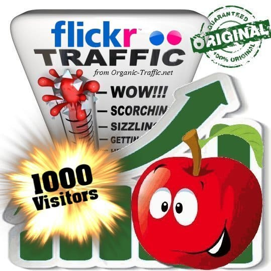 buy 1000 flickr social traffic visitors