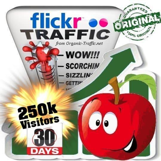 buy 250k flickr social traffic visitors in 30 days