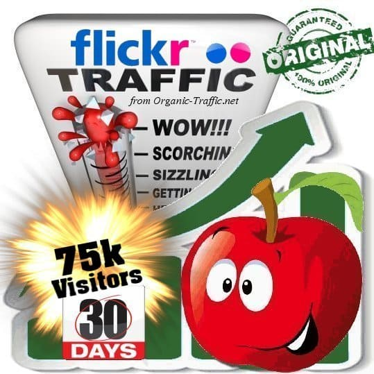 buy 75k flickr social traffic visitors in 30 days