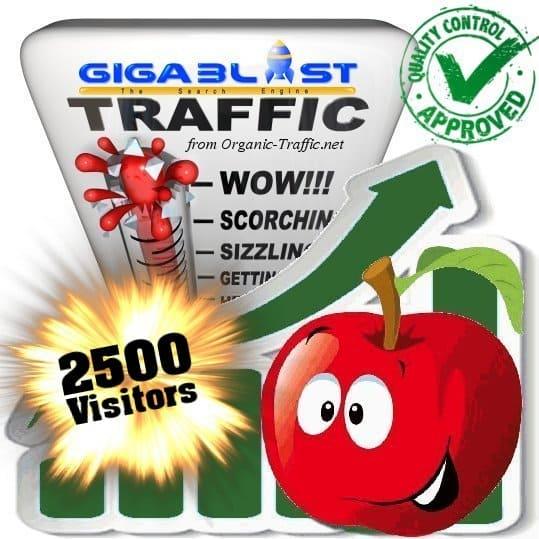 2500 gigablast search traffic visitors