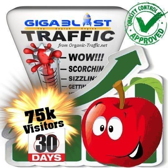 buy 75.000 gigablast search traffic visitors in 30days