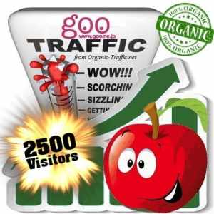 2500 goo organic traffic visitors
