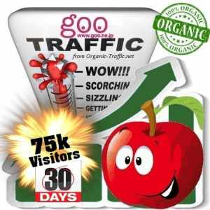 goo organic traffic visitors 30days 75k