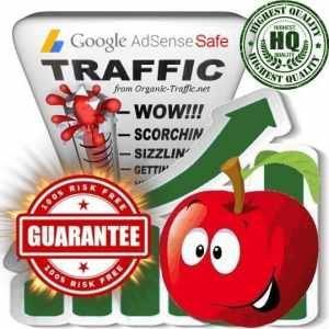 Buy Google Adsense Safe Traffic