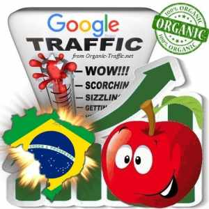 Google Brasil Web Traffic Service