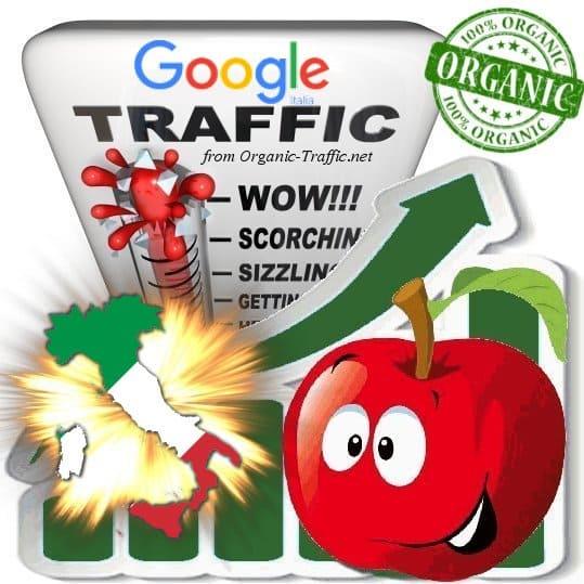 Google Italia Web Traffic Service