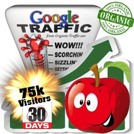 buy 75k google organic traffic visitors 30days