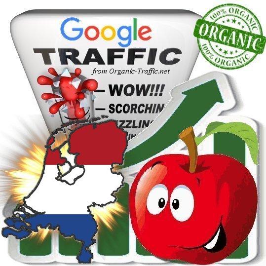 Dutch Google Search Traffic