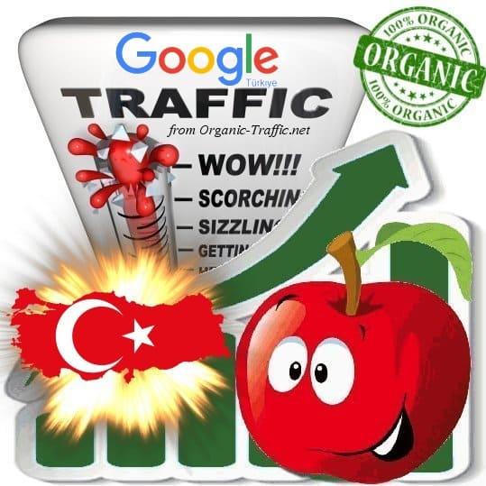 Google Türkiye Web Traffic Service