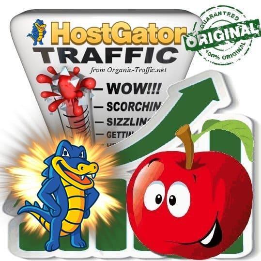 Buy Hostgator.com Web Traffic