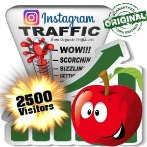 Buy 2500 Instagram Visitors