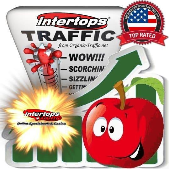 Buy Intertops.eu Web Traffic Service