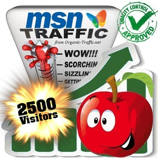 buy 2500 msn search traffic visitors