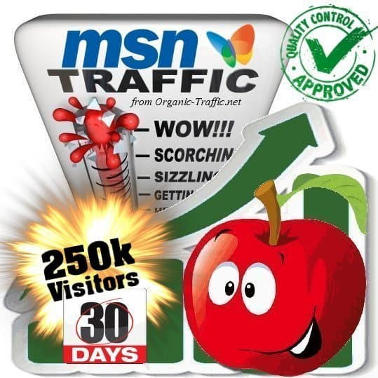buy 250k msn search traffic visitors within 30 days