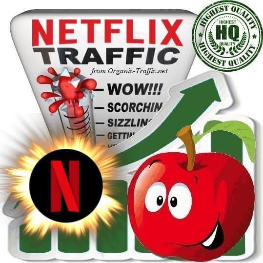 Buy Netflix.com Referral Web Traffic